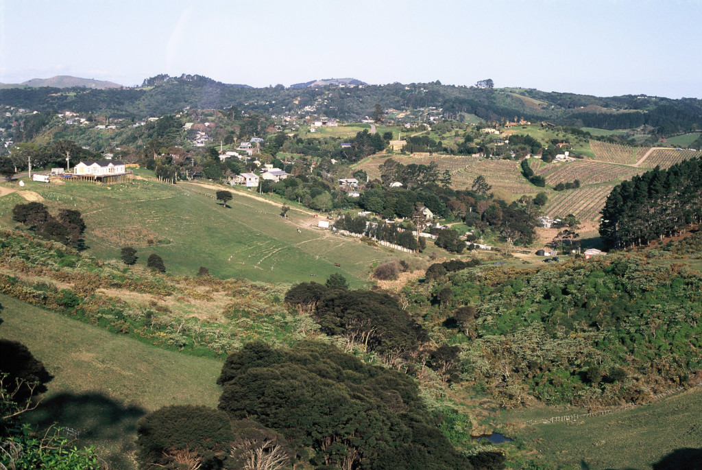 Onetangi fields